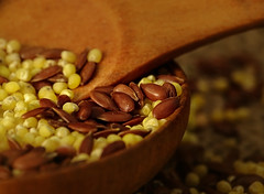Macro Mondays - Member's Choice: Seeds (Luana 0201) Tags: macromondays memberschoiceseeds seeds flaxseed milledmilletseeds millet woodenspoon woodenpot wood
