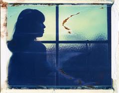 'Roid Week Spring 2017 3.1 (denzzz) Tags: portrait polaroid polaroid669 roidweek expired analogphotography instantfilm filmphotography thepolavoid hylasmag abandoned greenhouse polaroid195