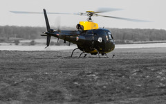 Chopper squad (Newage2) Tags: squirrel zj249 spta helicopter