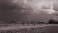One day in April. (detlefgabriel17) Tags: landscape landschaft bw blackandwhite schwarzweiss sky clouds wolken himmel rain regen shower schauer norddeutschland northgermany