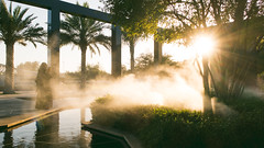 Arab atmosphere... (André Moecke) Tags: arab atmosphere emirati park sunset climax abudhabi uae ummalemarat
