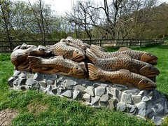 Salmon being pursued by otter (Martellotower) Tags: danbymoorscentrenorthyorks steve iredale wood sculpture salmon otter chain saw