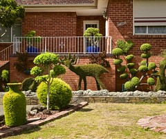 Pascoe Vale VIC (phunnyfotos) Tags: phunnyfotos australia victoria vic melbourne pascoevale garden gardendesign landscaping frontyard topiary deer urn kangaroo balcony twelve 12 redbrick suburbia suburban nikon shrubs d750 nikond750