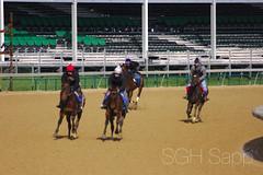 IMG_8311_01 (Sagrasa) Tags: churchilldowns kentucky horseracing thoroughbred