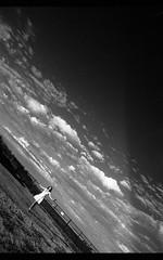 ??_Fomapan200014.jpg (Michael Bartosek) Tags: california xtol bwfilm model natalie 11 epsonv850scan michaelbartosekphotography 35mmfilm fomapan200 16bitgreyscale film homedevelopment
