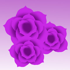 Roses (Kaylee Boelter) Tags: roses three purple