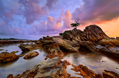 Seduction (zollatiff) Tags: travel sunset sea sky seascape reflection tree nature water colors clouds landscape evening twilight nikon scenery rocks dusk stones peaceful calm malaysia bonsai isolation serene tranquil foreground labuan zollatiff