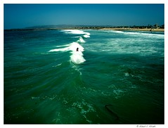 R0014611 (obaceman) Tags: california people beach surf waves sandiego oceanbeach