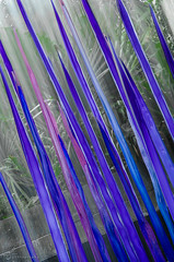 Neodymium & Blue Reeds | Dallas Arboretum (tookephoto) Tags: longexposure blue sculpture chihuly art water glass reeds garden waterfall dallas nikon soft texas purple angle arboretum sharp foliage points nikkor dallasarboretum neodymium waterwalls 180700mmf3545 neodymiumreeds d7000 bluereeds