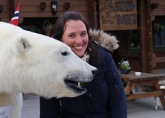Loving the bear (Clare Forster) Tags: cruise ice june norway svalbard arctic adventure explore polar spitsbergen 2013 gadventures