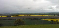 rape seed fields from lyth hill (squirrels k&s) Tags: shropshire shrewsbury rapeseed lythhill rapefields