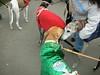 JingleBellWalk2010023