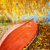 A boat covered with autumn leaves (Explodingfish) Tags: autumn lake tree fall nature water grass leaves finland season landscape outdoors leaf ground nopeople autumncolors rowboat jyväskylä palokkajärvi centralfinland goldenart samsunggalaxys2 jyväskyläsubregion