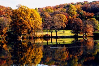 Long Island Autumn