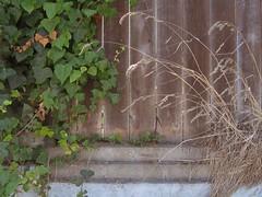 The alley where I m living now (brandon roth) Tags: blackandwhite colorado sandiego sculptures handbuilt minimalphotography arizonaphotography interestingphotography artistbrandonroth sandiegofineart