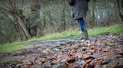 Those boots are made for walking (april-mo) Tags: winter france nature boots country wellies marais rubberboots nord bottes marshes fenain