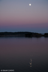 IMG_3624a (lime_puma) Tags: pink sunset sea moon water reflections finland swan tranquil archipelago