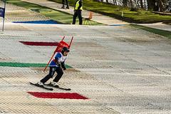 Skiing 018