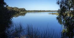 Lake Herdsman_Perth-Western Australia_DSC7273