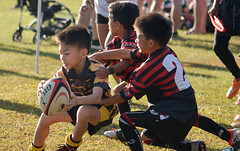 KL Saracens International Rugby 10s (- Photorugby -) Tags: sport rugby ball game football boy kid young team illustration vector player play activity cartoon child people leisure athlete isolated american person happy active training fun competition art clipart hobby kids uniform recreation drawing children male goal baseball athletic background soccer clip white graphic outdoors tournament pitch outdoor sporting college