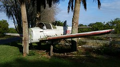 aviation airplanes airports jet planes aircrafts landscape florida lovefl frostproof avonpark abandoned trees palmtrees fence grass transport transportation shade lakeclinch silverlake reedylake vehicles retired arrivals finaldestination wings