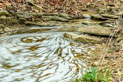 20170330-untitled shoot-3741.jpg (jgillmissouri) Tags: pond 3stop oakhollow 2017 landscape march nikond810 jack