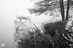 "L'Amazone dans la brume LM+35 1004154 (mich53 - thank you for your comments and 3,5M view) Tags: leicamtype240 france summiluxm35mmf14asph limay îledefrance marina brume brouillard bateau monochrome noirblanc télémètre matin bateaudanslabrume mist fog boat blackwhite rangefinder morning boatinthemist nebel boot einfarbig entfernungsmesser morgen ""boot im nebel"" niebla barco monocromo blancoynegro telémetro mañana barcoenlaniebla seine river riverside fluss rio silhouette yacht histoire"