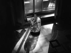 img033 (dmacfoto) Tags: fujifilm ga645 ilford selfdev