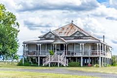 IMGP3784-Renovators Delight (womboyne7) Tags: house old timber roof iron veranda tree queenslander pentax k311 time grace climateefficent familyhome