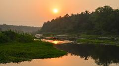 Down to the river we ride (sakthi vinodhini) Tags: pollachisurroundings pollachi river water sunrise early morning earlymorning coconut trees greenery tamilnadu rural india serene asia southeast livelihood