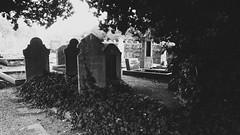 British Cemetery - Conchillas, Uruguay (Andrés Bentancourt) Tags: cemetery creepy horror terror monochrome blanco y negro black white misterio mistery paranormal tomb tombs graves lapidas lapida tumba tumbas uruguay south america uruguai