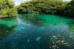 Tulum Casa Cenote blue-2
