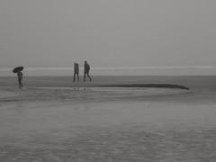 Un parapluie contre le brouillard... An umbrella against the fog.. (alainpere407) Tags: alainpere bretagne bretagneennoiretblanc breizh brittany fog brouillard umbrella parapluie sainteannelapalud plage beach