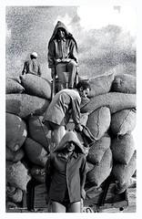 Carga de sacas de paja (Imati) Tags: obreros recolección sacas paja trix verano nikon f photomic t