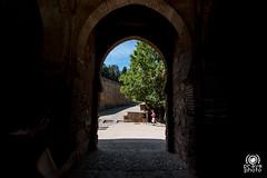 Alhambra (andrea.prave) Tags: andalusia andalucía andalusien アンダルシア андалусия أندلسيا 安达卢西亚 alhambra granada unesco spain spagna españa espagne spanien スペイン испания إسبانيا 西班牙 arabian arabo árabe arabe arabisch アラビアの арабский العربية 阿拉伯