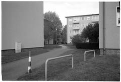 Stresemannallee, Louisa (Christoph Schrief) Tags: frankfurtammain sachsenhausen louisa leicam2 zeisscbiogon2835 agfaapx100newneu selfdeveloped rodinal 150 10min 20° film analog sw bw