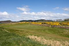 14th @ West Kilbride GC (Don McDougall) Tags: donmcdougall don mcdougall scotland coast coastal ayrshire landscape westkilbride seamill shore westkilbridegolfcourse golf golfcourse golfing