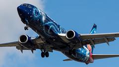 IMG_1526_20170427_CGWSZ (CharlieOscar98) Tags: westjet boeing 737 737800 73w 7378ct cgwsz disney sorcerer mickey cyvr yvr vancouver airport