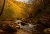 Gole del Farfa (ghiaccioazzurro) Tags: farfa gole mompeo nature natura river water italy rieti