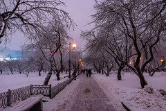 mvbnct5d (olegmescheryakov) Tags: moskva moskau russland keywords winter snow cold ice white blue tree trees sunset light forest black beautiful sky city cityscape travel night urban street town clouds shadow architecture lights water outdoor landscape people snowfall