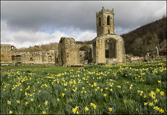 Mount Grace Priory (Craig 2112) Tags: mount grace priory yorkshire medieval charterhouse english heritage national trust carthusian