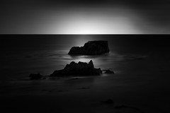 Pacific Shell (StefanB) Tags: 1235mm 2017 bw california coast em5 geotag horizon longexposure monochrome outdoor pacific pismobeach sea seascape eldwayenoceanpark ocean coastal