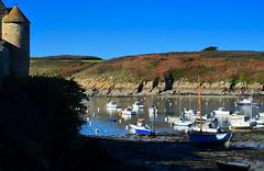 le port du conquet (eric-foto) Tags: nikond800 mer sea pennarbed bzh brittany bretagne breizh harbour port leconquet finistère littoral