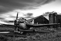 Fairey Gannet - Errol (Cathy Lovell) Tags: aviation aircraft military plane abandoned haunting neglected derelict monochrome black white royal navy errol scotland beautiful sad state broken wing propeller