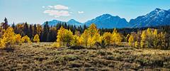 Jackson Hole, Wyoming (John Stankovich) Tags: jackson hole wyoming fall colors mountains grand teton national park usa jacksonhole grandteton