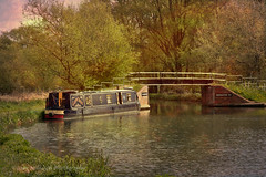 Weekend Retreat (Dave Hilditch Photography) Tags: essex riverstort narrowboat rivers boats textures trees stort bridge