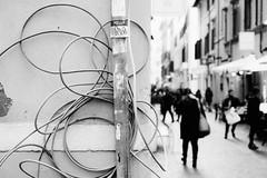 Hello wires (lorenzoviolone) Tags: bw blackwhite blackandwhite d5200 dof dslr monochrome nikon nikond5200 polaroid665 reflex streetart vsco vscofilm cable cables cobblestone depthoffield event2017chinesenewyear hello pole strangers streetphoto streetphotobw streetphotography walk:rome=jan2017 roma lazio italy