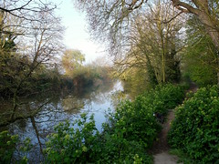 The Royal Military Canal early on a Spring morning... (favmark1) Tags: saxonshoreway walk spring hythe 2017 365 365challenge day98 theroyalmilitarycanal