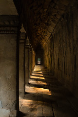 Ta Prohm Angkor (Derek Robison) Tags: cambodia places