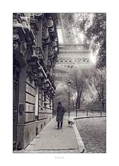 Paris n°146 - rue l'Université (Nico Geerlings) Tags: ngimages nicogeerlings nicogeerlingsphotography leicammonochrom 50mm summilux paris parijs france toureiffel eiffeltoren eiffeltower champsdemars